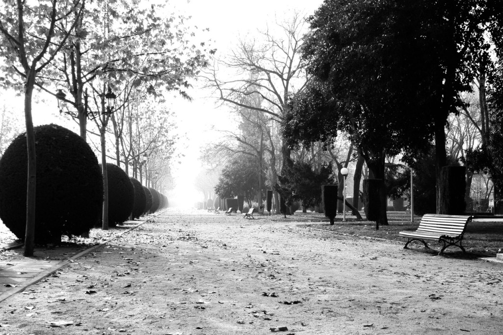 Parks_Luizes_bilde